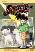 Case Closed - Vol.29