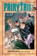 Fairy Tail - Vol.15