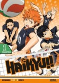 Haikyu!!: Season 1 - Part 1 (OwS)