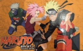 Naruto - Box 2 (Vol.28-48)