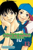 Kimi ni Todoke: From Me to You - Vol. 13
