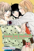 Kimi ni Todoke: From Me to You - Vol. 18