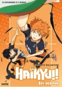Haikyu!!: Season 1