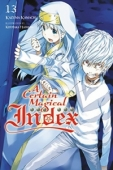 A Certain Magical Index - Vol.13: Kindle Edition