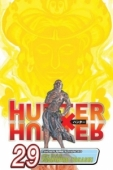 Hunter X Hunter - Vol. 29: Kindle Edition