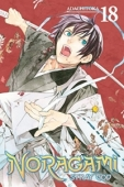 Noragami: Stray God - Vol.18: Kindle Edition