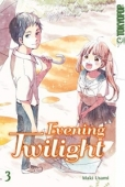Evening Twilight - Bd. 03: Kindle Edition