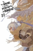 Is It Wrong To Try To Pick Up Girls In A Dungeon? - Vol.11: Kindle Edition