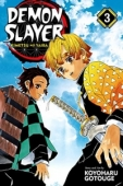Demon Slayer: Kimetsu no Yaiba - Vol.03: Kindle Edition