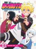 Boruto: Naruto Next Generations - Part 01 + OVA