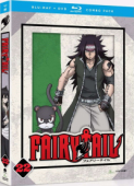 Fairy Tail - Part 22 [Blu-ray+DVD]