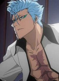 Grimmjow JEAGERJAQUES is a character of anime »Bleach« and of manga »Bleach«.