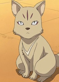 """Inu"" is a character of anime ""Blood-C"" and of manga ""Blood-C""."