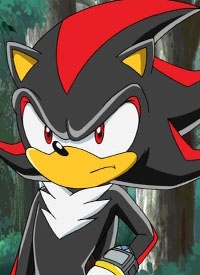 Shadow the Hedgehog is a character of anime »Sonic X«.
