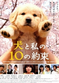 Movie: 10 Promises to My Dog