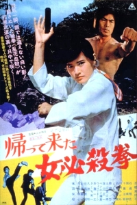 Movie: Return of the Sister Street Fighter