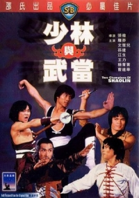Movie: Two Champions of Shaolin
